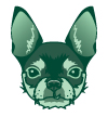 Vector portrait of my dog Sam's head in green. Sam is a chihuahua.
