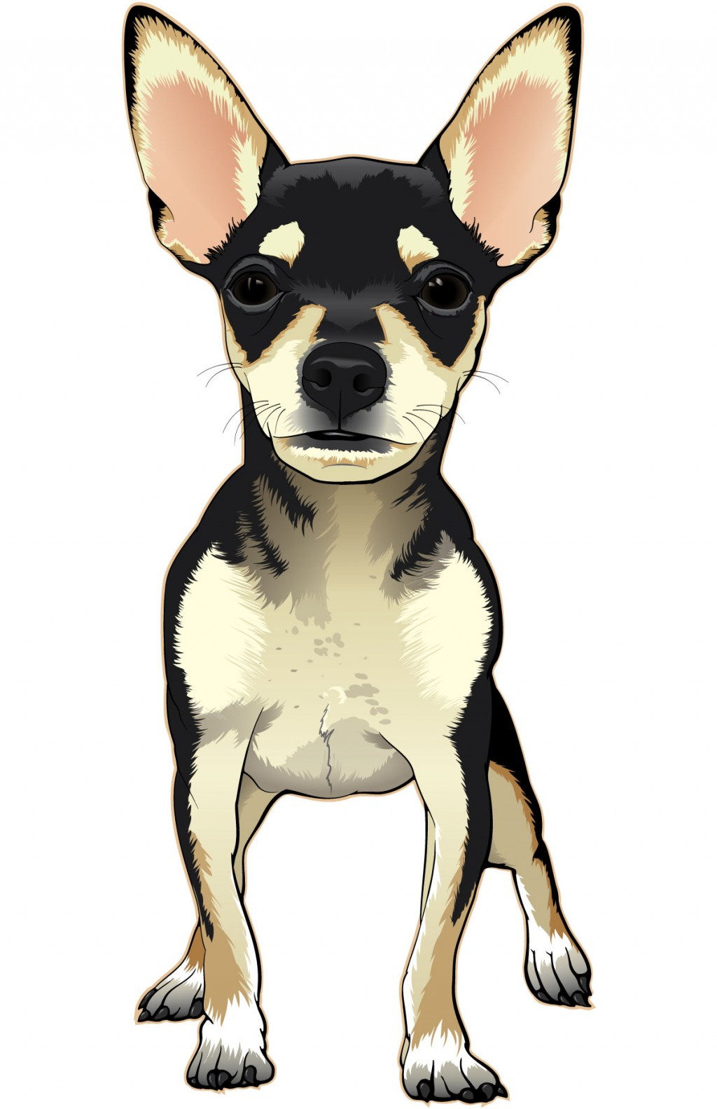 Color illustration of a black and tan chihuahua puppy.