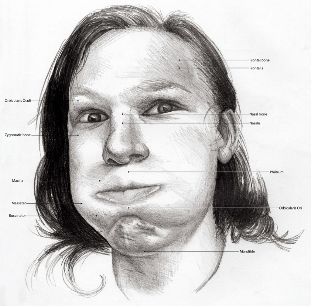 Black and White illustration of someone, jaw open hands on face, looking shocked. Anatomical features labeled.