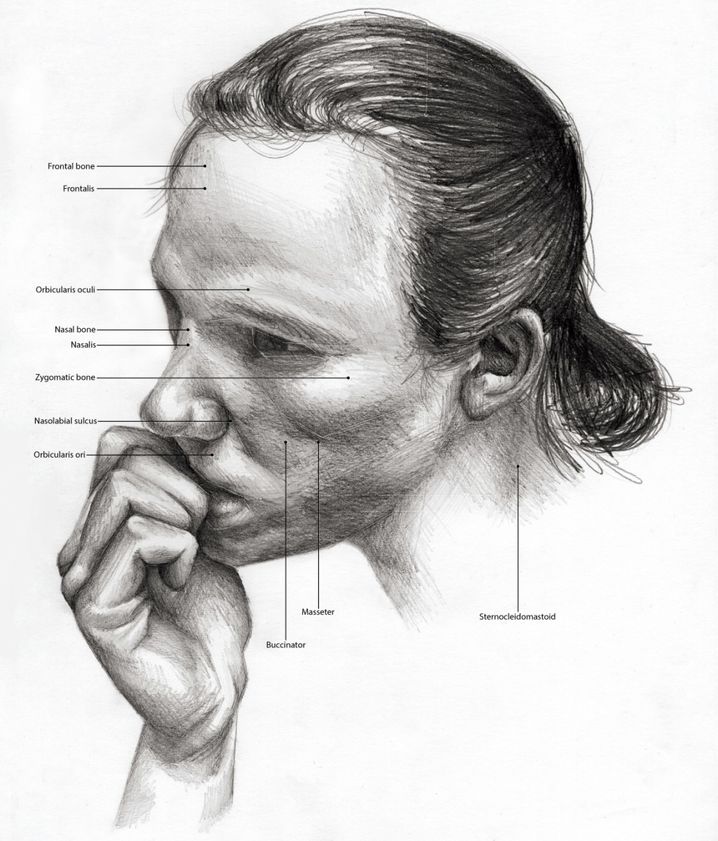 Black and White illustration of someone biting their nails. Anatomical features labeled.