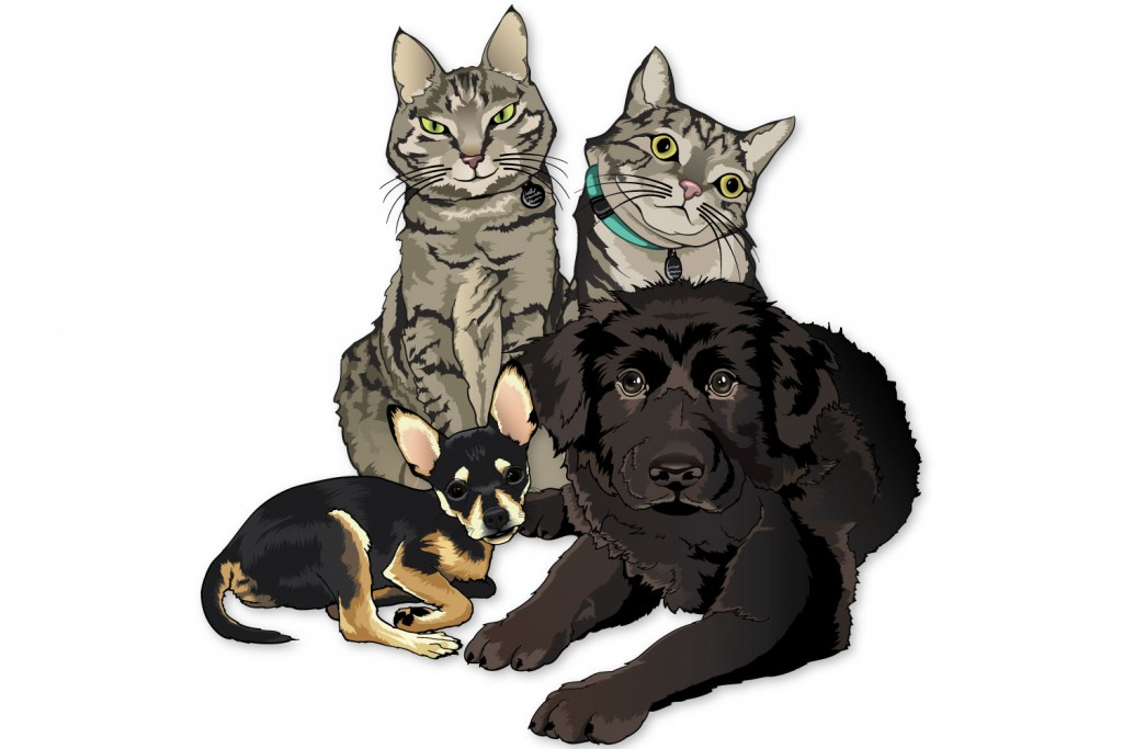 Color illustration of two gray and black striped, domestic shorthair cats, a black and tan chihuahua, and a black newfoundland puppy.