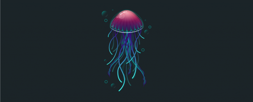 Full color stylized illustration of a jellyfish.