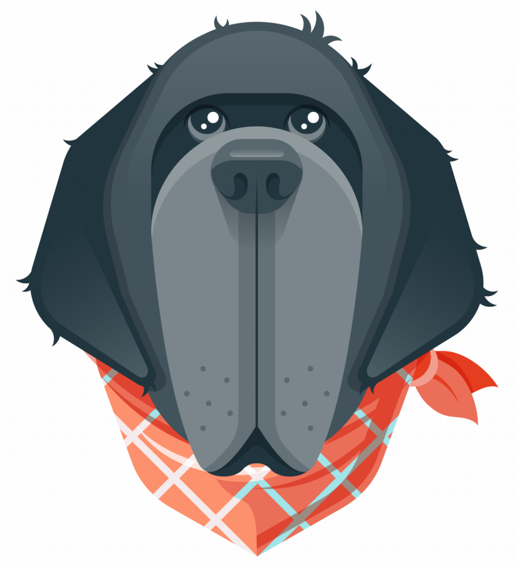 Illustration of a dog face. Nefoundland dog features. Dark color. Very exaggerated long face and features. Character. Bright orange bandana.