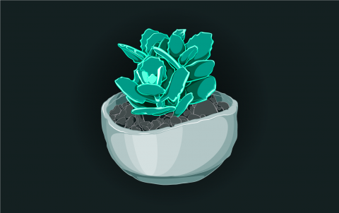 Color illustration of a potted green succulent plant in a gray pot with river rocks, sitting on a dark background.