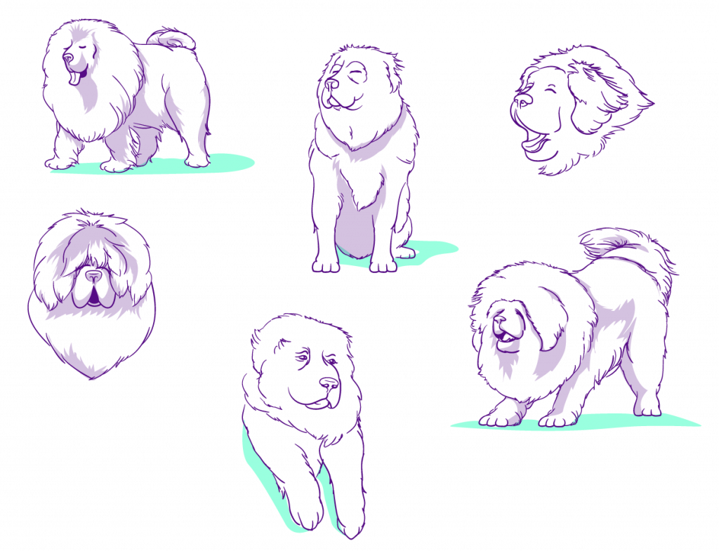 purple line sketches with loose shading of Tibetan Mastiff dogs in various poses.