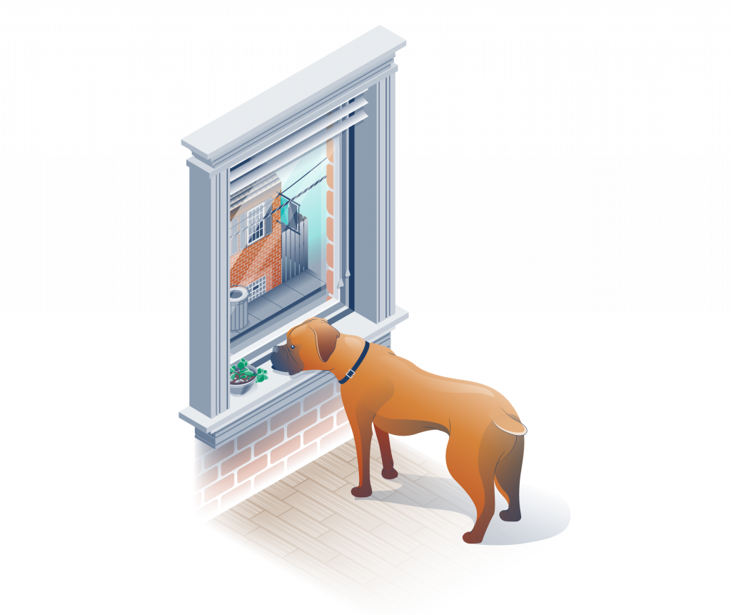 Full color isometric illustration, boxer looking out window.