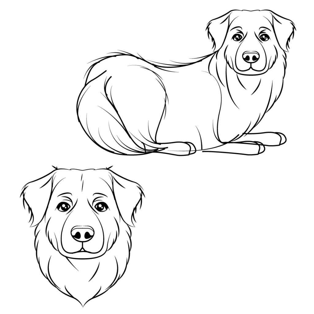 Line art sketch of a dog, Sage.